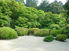 こんな庭が欲しい