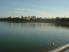 ひたすらでかい池